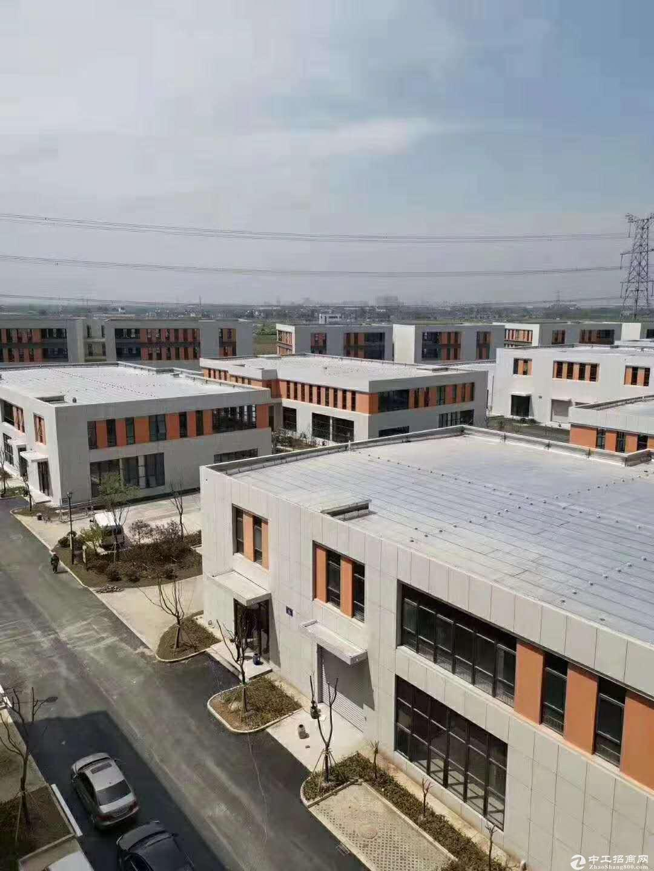 慈溪标准厂房出售 独栋两层三层 50年产权可按揭图片1