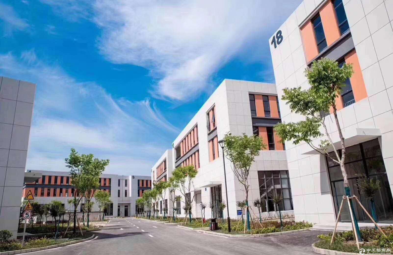 慈溪标准厂房出售 独栋两层三层 50年产权可按揭