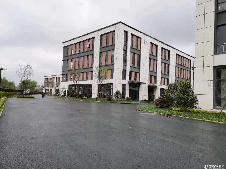 慈溪工业厂房 独栋1200平 可按揭产权50年图片6