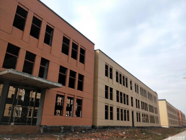出售 浏阳市经开区 蓝思科技旁 首层7.2米的独栋厂房图片2