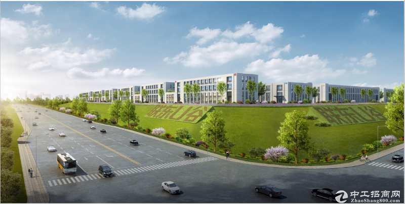 出售 浏阳市经开区 蓝思科技旁 首层7.2米的独栋厂房图片3