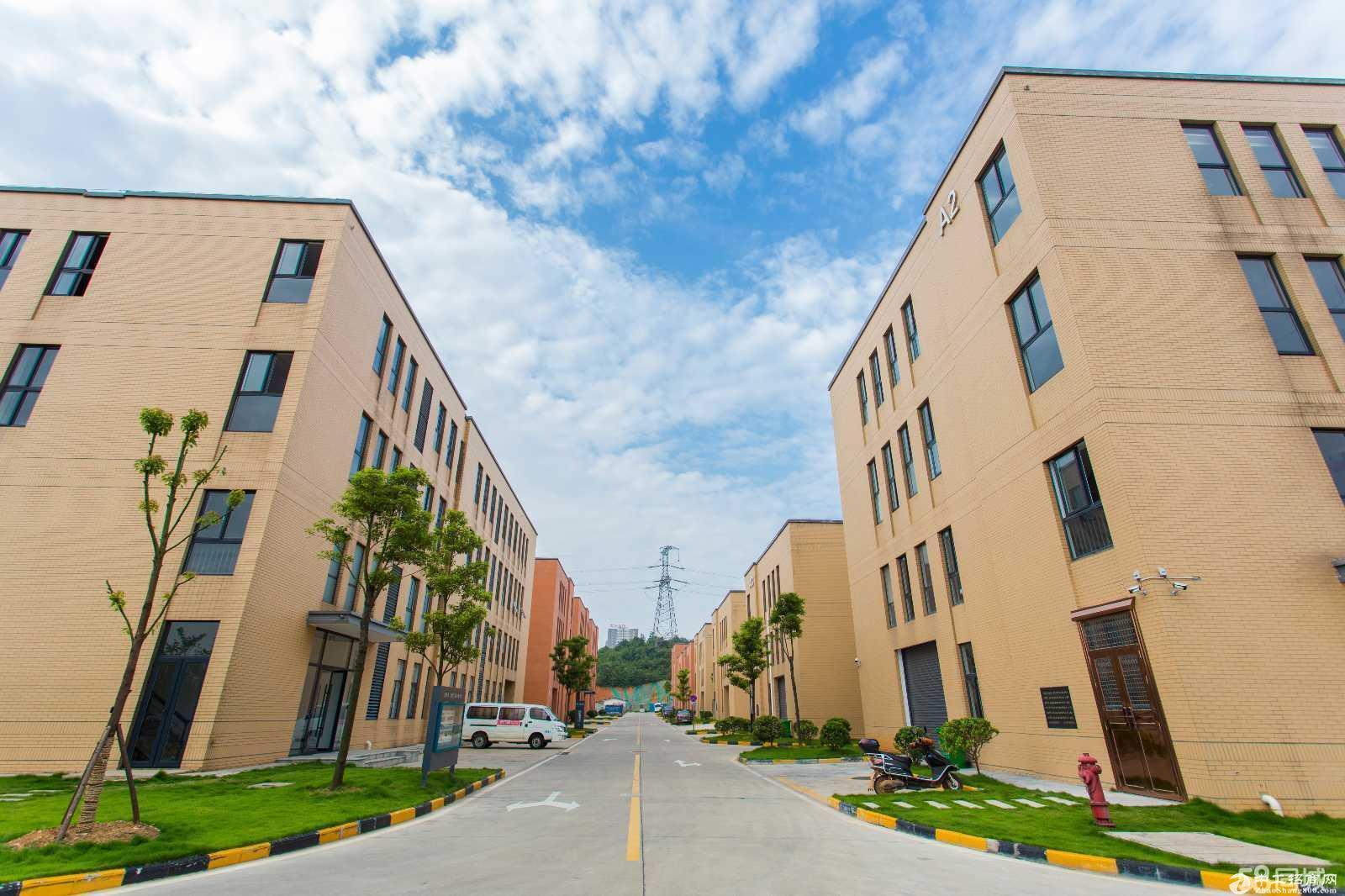 出售 浏阳市经开区 蓝思科技旁 首层7.2米的独栋厂房图片4