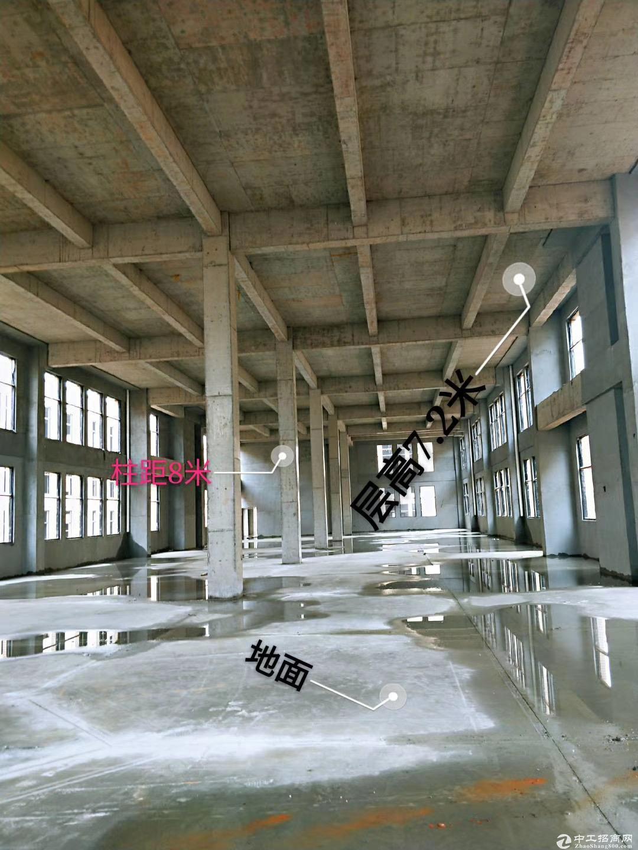 出售 浏阳市经开区 蓝思科技旁 首层7.2米的独栋厂房图片6