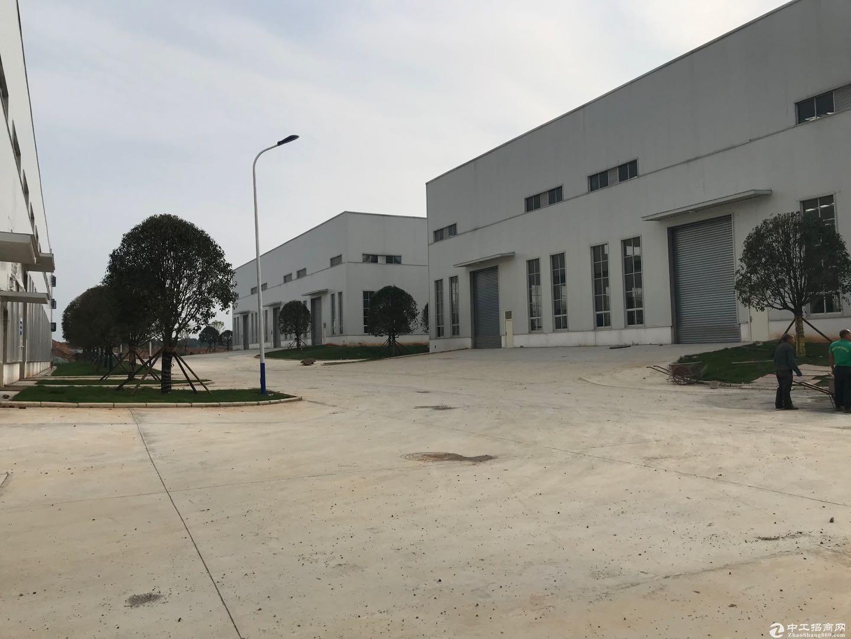 南北通透 产品极多 标准厂房 位于 永州市经开区