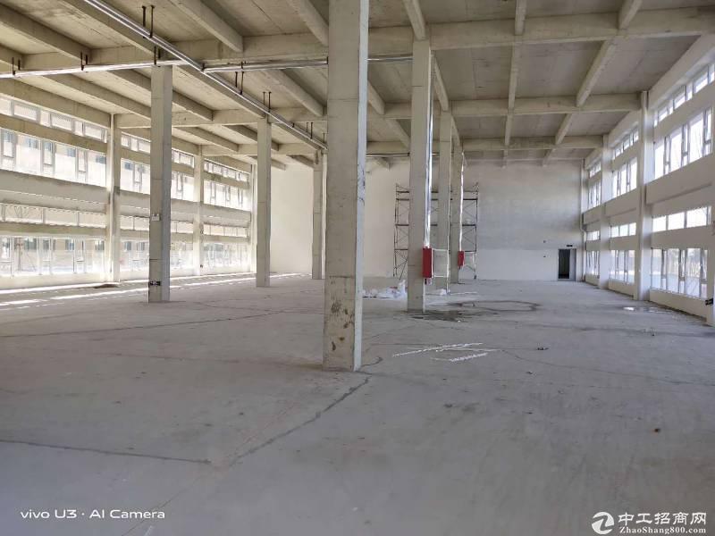首付2成起!青岛高新区独栋厂房,7.2米层高可环评图片1