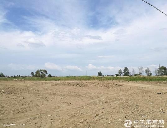 江夏郑店国有土地出售,20亩起售...