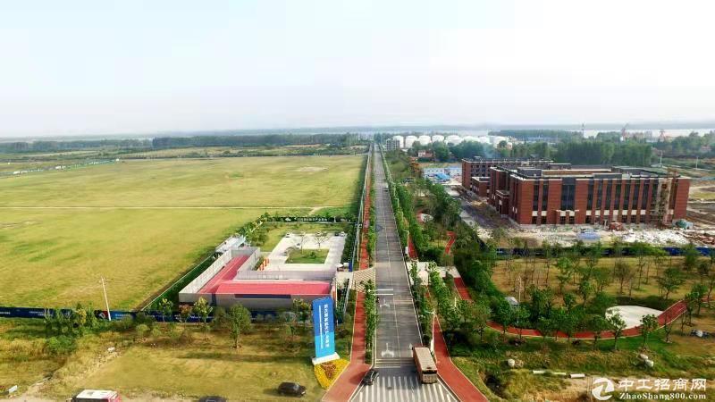 新洲双柳,国有工业用地出售,有优惠政策