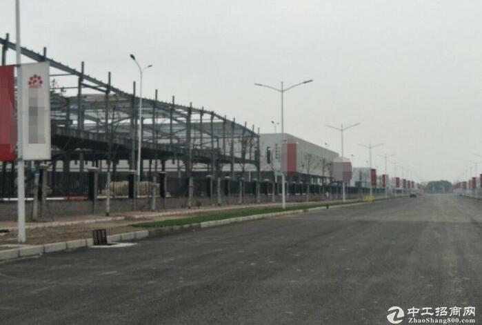 蒲江县国有工业地皮 九通一平 20亩起 有优惠政策