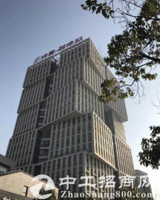 光谷高新技术产业园区写字楼、办公楼出租