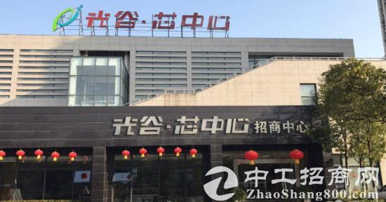 光谷芯中心 地标性写字楼出租,企业独栋出售
