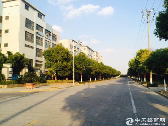 嘉定南翔独栋精装办公研发仓储厂房D市价出售 可按揭