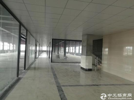 科学城3000平方全新写字楼招租,适合学校培训研发电商等