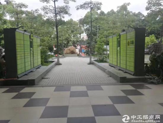3500平方全新写字楼招租,适合学校培训研发电商等