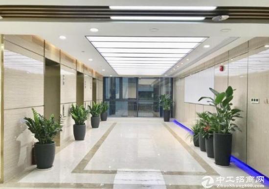 深圳湾生态园450平电梯口精装修送家私送阳台