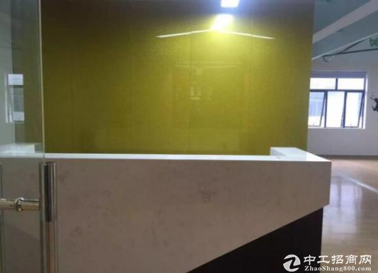 龙华汽车站351平米带隔间精装办公室招租中