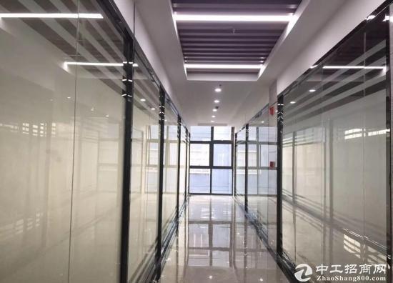 深圳湾科技生态园!大小面积均有!高空看海景!