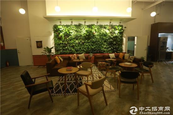 市南核心CBD精装带家具创业园可享房租补多房型