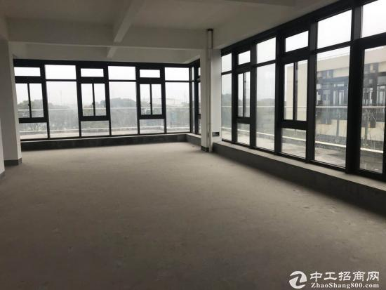 闵行颛桥104产业园,总部研发50~8200平