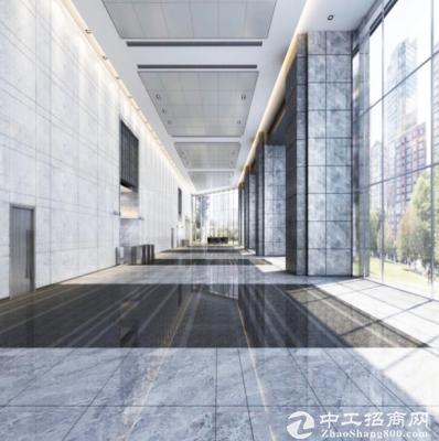 全新高端星河写字楼1800㎡出租精装享政策扶持