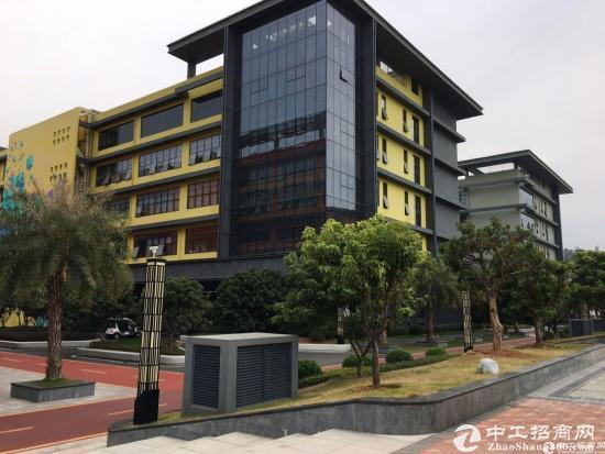 深圳市孵化器五和大道边270-500平办公室出租图片5