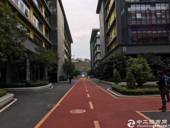 深圳市孵化器五和大道边270-500平办公室出租图片1