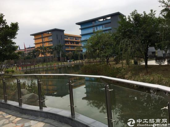 深圳市孵化器五和大道边270-500平办公室出租图片3