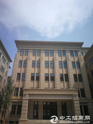 独栋办公研发楼出售