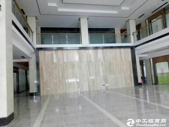 龙岗中心城 (乐年广场)200平全新装修写字楼招租图片1