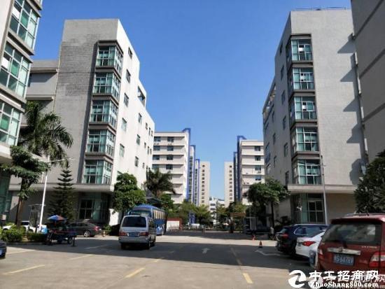 石岩原房东带红本100-2000平米办公楼招租图片1