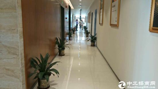 坪山写字楼办公室出租,面积大小均可图片1