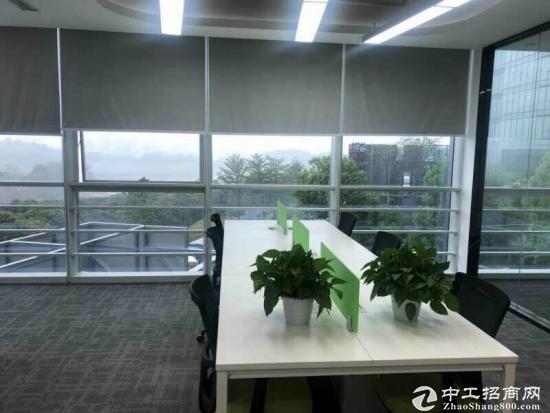 华南城国际电商中心,双地铁口物业。图片1