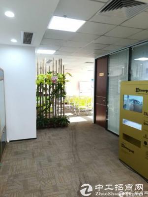 龙华商业街高档写字楼出租(大小可分租)图片1