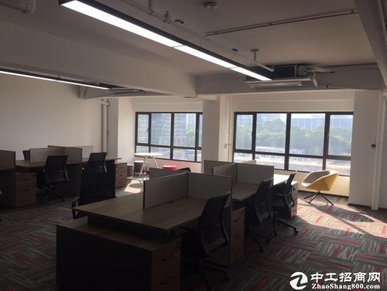 深圳湾科技生态园,独立区域适合科研科研各种公司!图片4