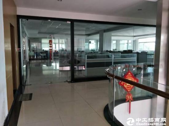 坪山新区坪山首座写字楼 556平米出租图片3
