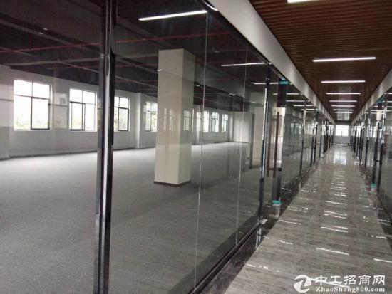 中航城广场 精装修写字楼 实际面积出租图片4