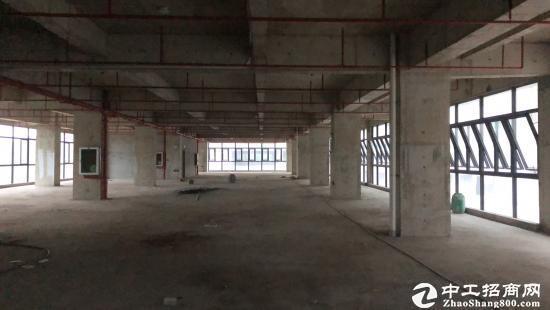 坪山保税区全新独栋写字楼8层单层1979平,大小随意分图片5