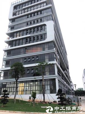 坪山保税区全新独栋写字楼8层单层1979平,大小随意分图片3