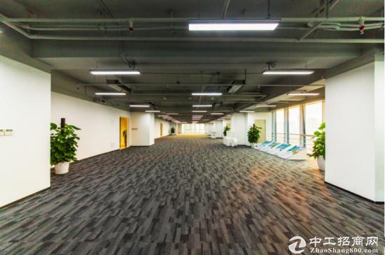 龙岗坂田甲级写字楼542㎡ 层高 5.4米 使用率达75%图片2