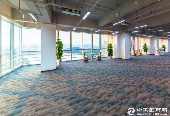 龙岗坂田甲级写字楼542㎡ 层高 5.4米 使用率达75%图片5