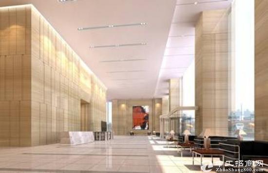 深圳湾科技生态园新出写字楼整层2906平出租科技类企业首选图片3