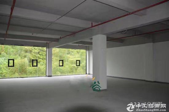 横岗地铁站附近 创意园 200平 带装修 水电齐全图片1
