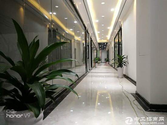 龙华新区自有物业办公室出租94平方图片4