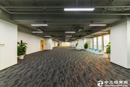 龙岗坂田甲级精品商务写字楼招租,高端大气!图片5