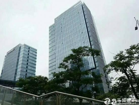 龙岗新出地铁口100平精装写字楼招租图片5