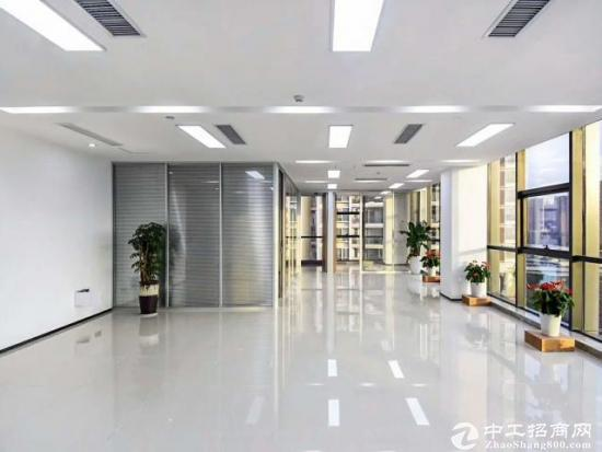 写字楼 木棉湾地铁站 中安大厦 348户型4+1格局精装图片3