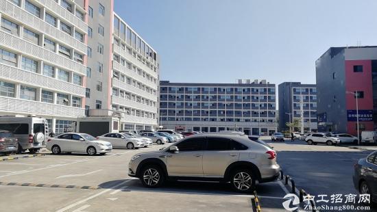 物业直租 坂田  地铁口电商产业园 241平4+1格局图片3