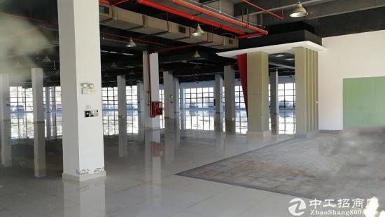 物业直租 坂田  地铁口电商产业园 241平4+1格局图片2