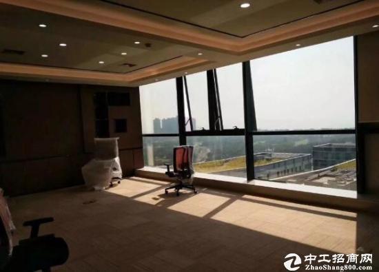星河写字楼三期 甲级精品中心商务区260平招租图片1
