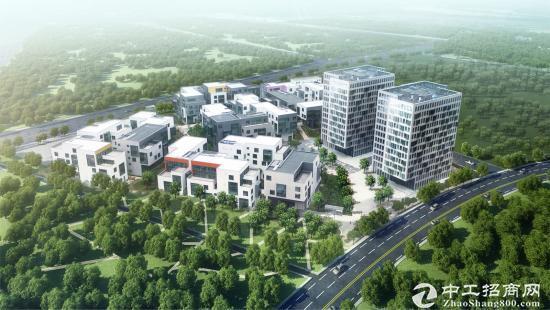 上海张江国创中心一期研发办公楼(整层、独栋招租)