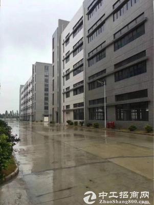 坪山全新独栋写字楼8层单层1960平,大小可分租图片2